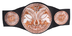 team championship belt wrestling entertainment title