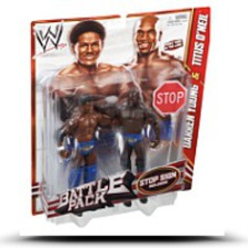 Wwe Series 21 Battle Pack Darren Young